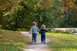 Фотографии Осень Трава Тропа Две Мальчишки Боке Листва Сзади Прогулка ребёнок