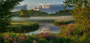 Обои Канада Утро Реки Тумана Облака Wellington County Природа