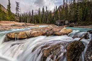 Картинки Канада Река Камень Деревьев British Columbia Природа