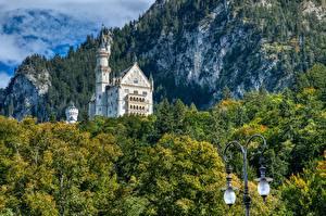 Картинка Замок Германия Лес Нойшванштайн Бавария Скале Уличные фонари Bavarian Alps, Schwangau Природа