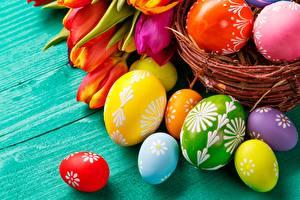 Картинки Вблизи Яйца Разноцветные