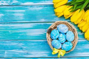 Фото Пасха Тюльпаны Яйца Доски Шаблон поздравительной открытки