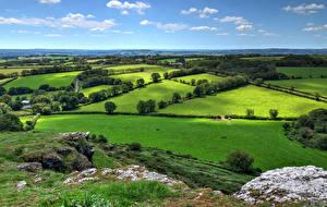 Обои Англия Поля Дороги Brentor, West Devon Природа