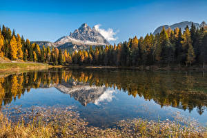 Картинки Италия Горы Осенние Озеро Деревья Отражается Альпы Lake Antorno, Dolomites