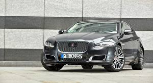 Обои Jaguar Спереди Седан XJ L 3.0 V6, Diesel Autobiography, 2016