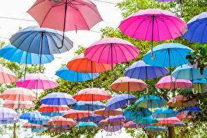 Фотографии Много Зонт