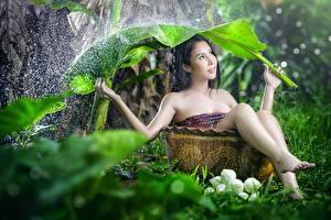 Картинка Дождь Азиатка Листья Брызги Брюнетки Сидящие Размытый фон молодые женщины