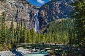 Обои для рабочего стола Реки Мосты Леса Горы Водопады Парки Канада Yoho National Park Природа