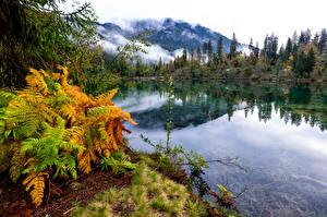 Фотографии Швейцария Осень Горы Озеро Альп Crestasee Природа
