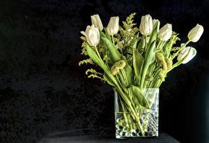 Фотографии Тюльпаны Серый фон Ваза Белый цветок