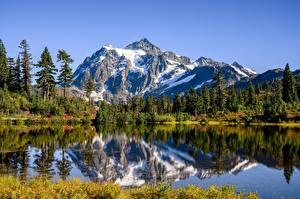 Обои США Горы Озеро Отражается Деревья Picture Lake, Mount Shuksan, Cascade Range