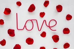 Картинки День всех влюблённых Лепестки Слово - Надпись Инглийские