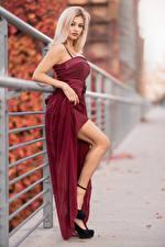 Фотография Блондинка Платье Ноги Боке Взгляд Alessandra Девушки