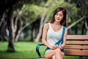 Фотографии Азиатка Скамейка Сидя Размытый фон молодая женщина