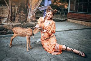 Картинки Азиаты Олени Детеныши Сидя Платья Улыбается молодые женщины Животные