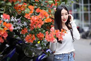 Фото Азиаты Цветущие деревья Брюнеток Смотрят Девушки