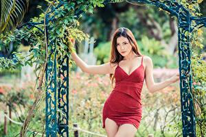 Фотографии Азиатки Позирует Платья Смотрят молодая женщина