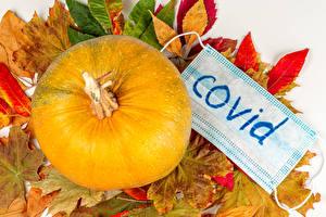Обои Осенние Коронавирус Тыква Маски Листья Природа