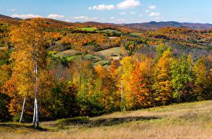 Картинка Осень США Лес Дерева Холмы Vermont Природа