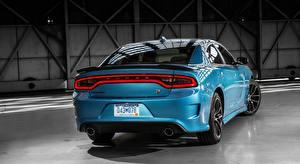 Фотографии Dodge Сзади Металлик Голубые Charger, R/T Scat Pack, 2015 машины