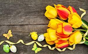 Обои Пасха Тюльпаны Яиц Доски Цветы
