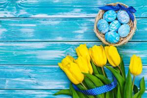 Обои Пасха Тюльпаны Яйцами Доски Шаблон поздравительной открытки Цветы