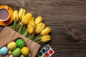 Фотографии Пасха Тюльпаны Шаблон поздравительной открытки цветок
