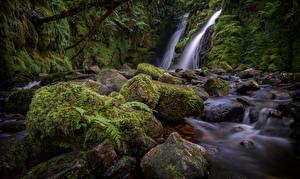 Обои для рабочего стола Англия Речка Камень Мох Dartmoor Природа