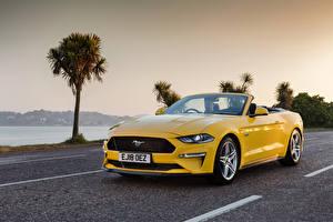 Обои Ford Кабриолет Желтый Металлик Mustang GT Convertible, UK-spec, 2018-- машина