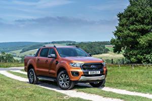 Картинка Форд Пикап кузов Коричневая Металлик Ranger Wildtrak UK-spec, 2019-- авто