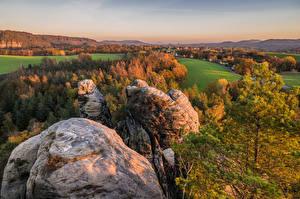 Картинки Германия Осень Пейзаж Утес Деревьев Saxony Природа