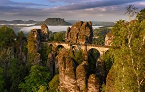Обои для рабочего стола Германия Мосты Скале Rathen Saxony Природа