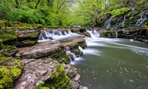 Фотография Германия Камни Леса Водопады Ручей Black Forest Природа