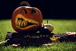 Картинка Хэллоуин Праздники Осень Тыква Трава Лист Бревна