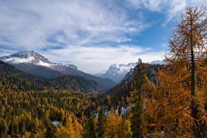 Обои Италия Горы Осень Альпы Деревьев Dolomites, South Tyrol