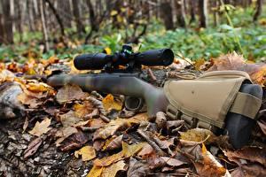 Обои для рабочего стола Винтовки Снайперская винтовка Осенние Лист военные