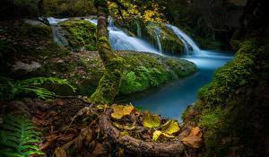 Картинки Испания Осень Камень Водопады Мох Листья Природа