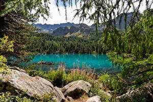 Фотографии Швейцария Горы Озеро Камень Альпы Lago di Saoseo Природа