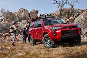 Картинки Toyota Внедорожник Красные Металлик 2020 4Runner Venture Edition машина