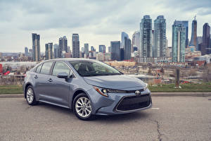 Картинки Toyota Серый Металлик 2020 Corolla XLE Sedan автомобиль