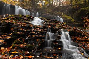 Картинка США Осенние Камень Водопады Листва Mohawk Falls Природа