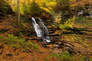 Фото США Парки Осень Водопады Камень Ручей Листва Ricketts Glen Природа