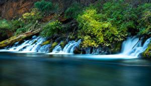 Фото Америка Реки Водопады Metolius River Oregon Природа
