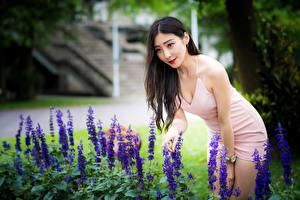 Фотография Азиаты Брюнетка Платье Боке Девушки