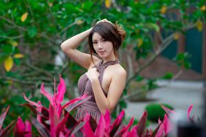 Фотографии Азиатка Поза Платье Рука Взгляд Размытый фон