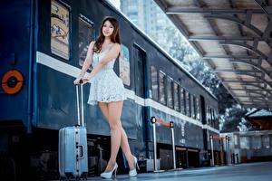 Картинки Азиатка Поезда Поза Платье Чемоданы Смотрит Ног Шатенка молодые женщины