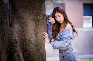 Картинки Азиатка Ствол дерева Поза Куртка Шатенка девушка