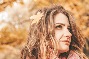 Фотографии Осень Боке Лица Шатенка Взгляд Лист Волос девушка