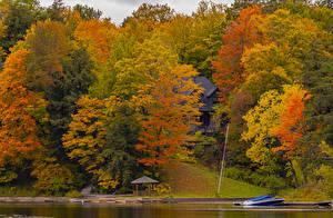 Фото Осенние Канада Парки Дома Пристань Деревьев Разноцветные Huntsville, Ontario Природа