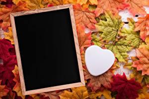Фотографии Осень Клён Сердца Шаблон поздравительной открытки
